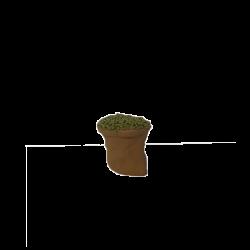 Sac d'olive 7cm