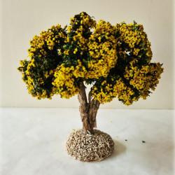 Arbre mimosa